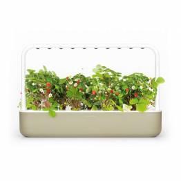 Click and Grow Smart Garden 9 Starter kit