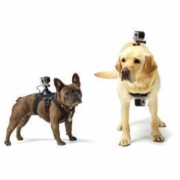 Gopro holder til din hund/kat
